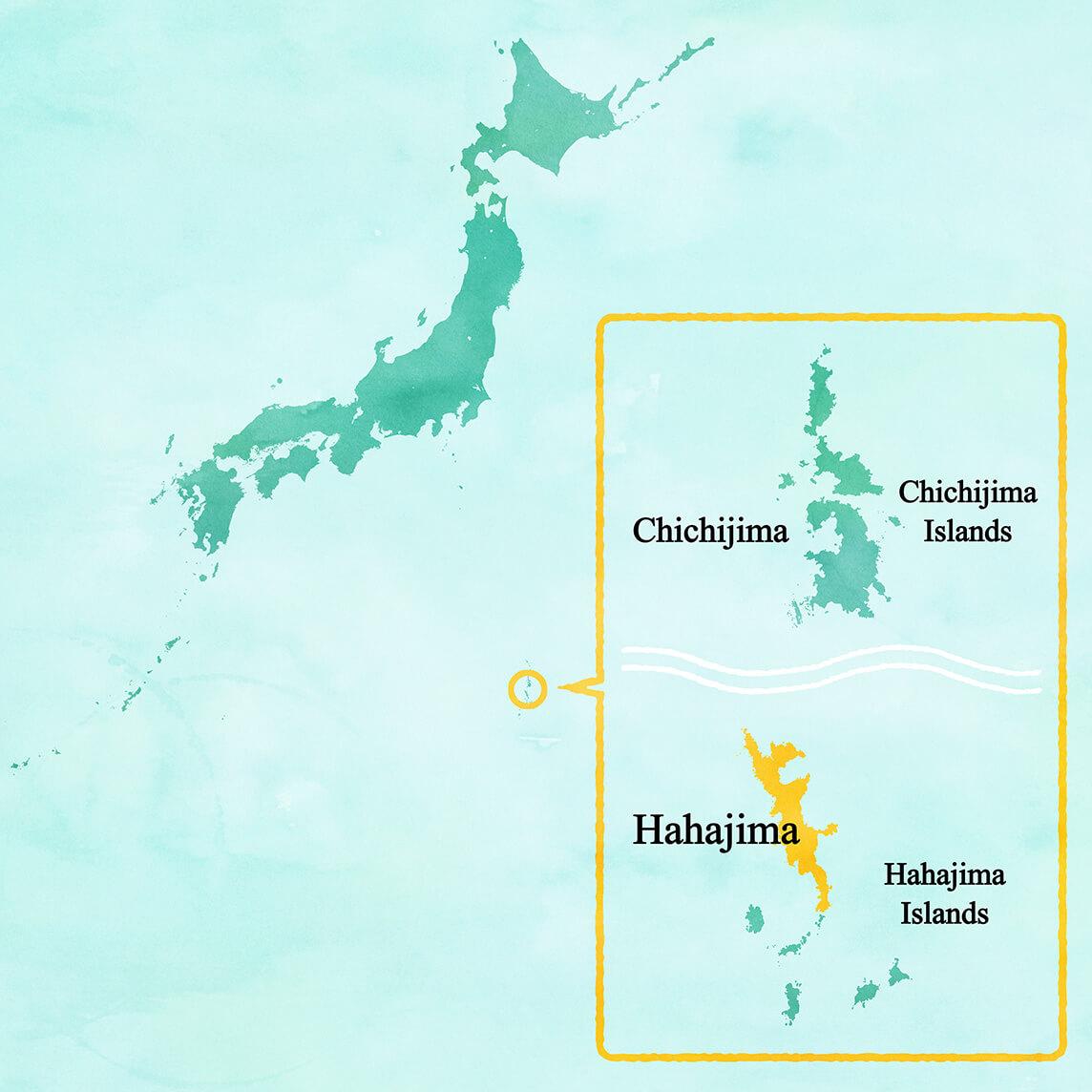 Ogsawara MAP
