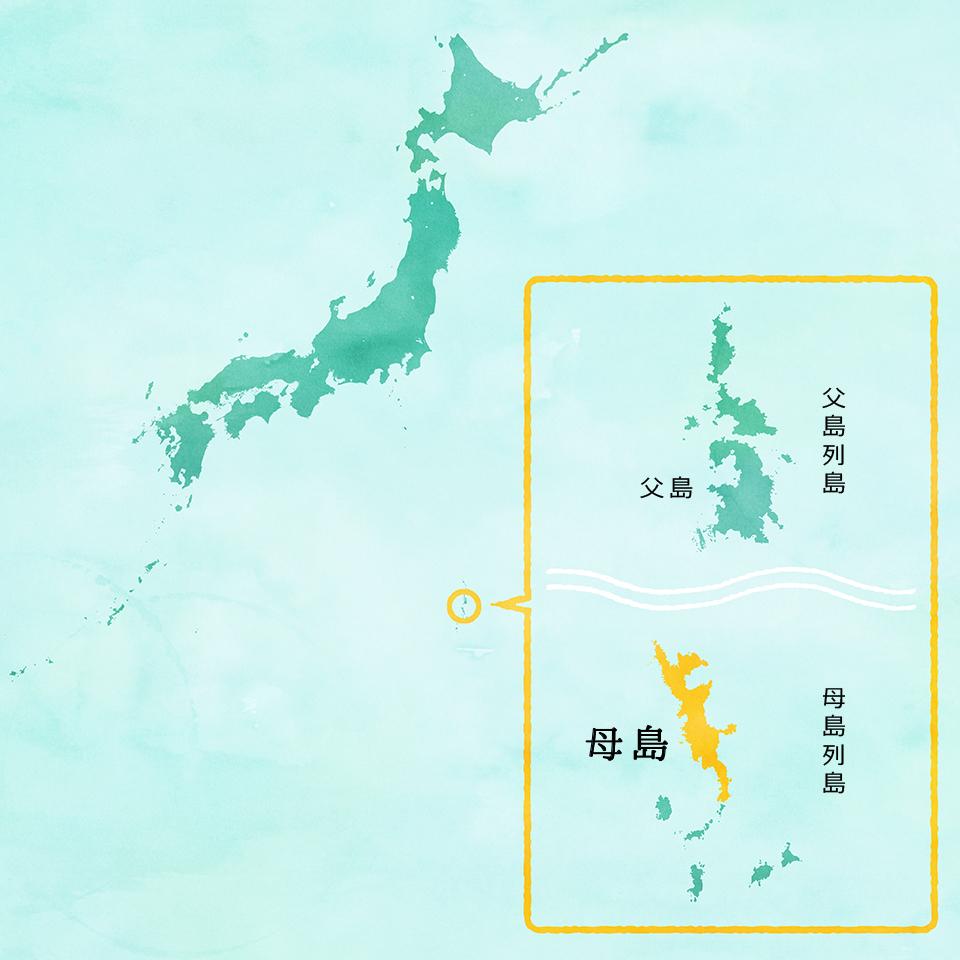 小笠原MAP