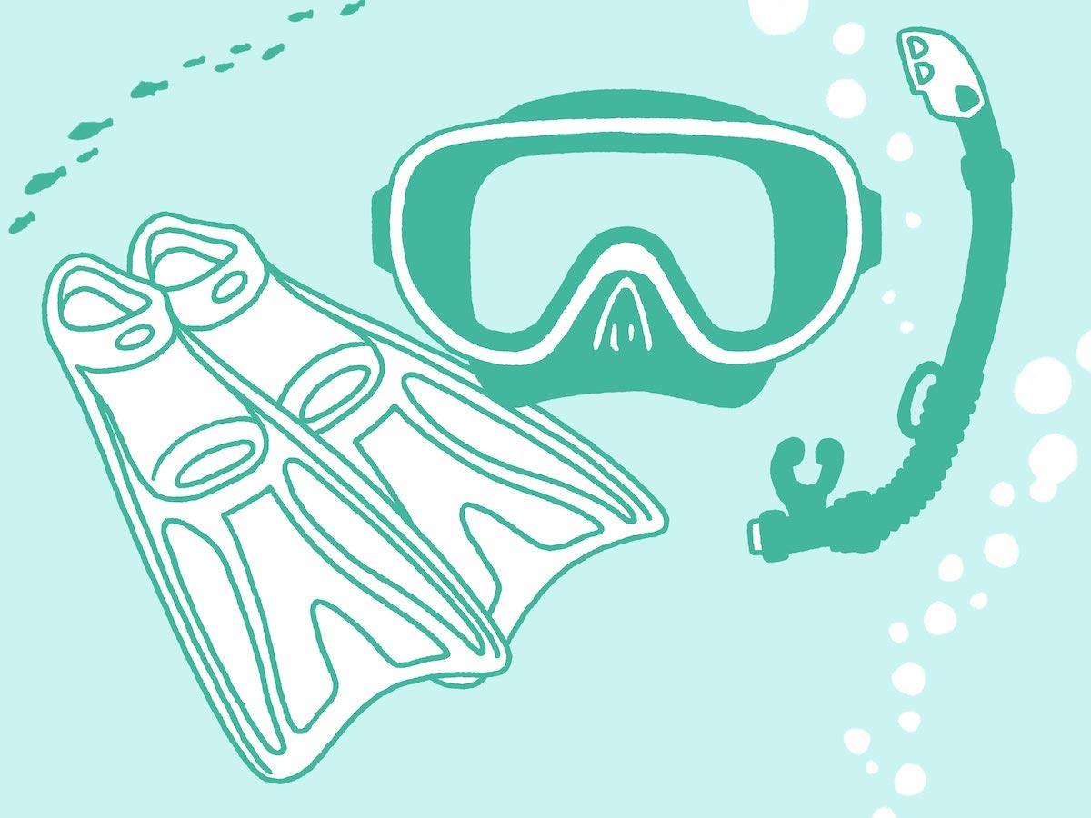スノーケル機材:ダイブリゾート母島